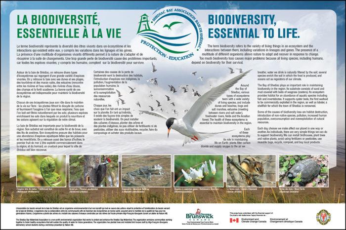 Biodiversité / Biodiversité - ABVBS / SBWA