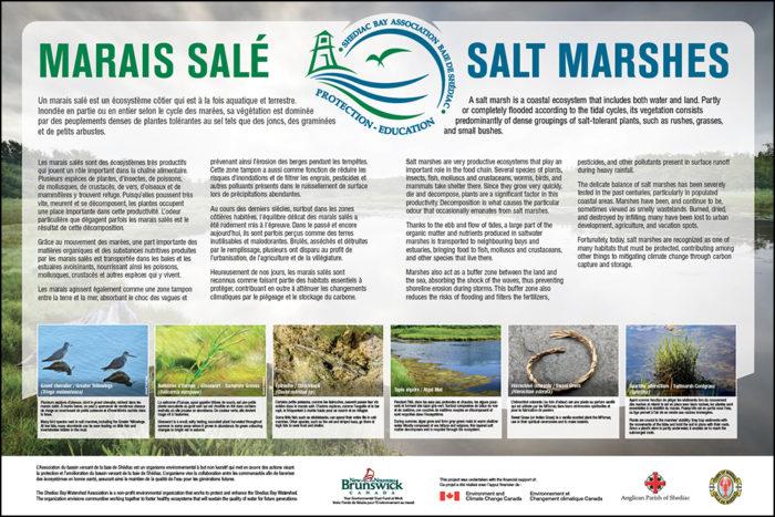 Marais salés / Salt Marshes - ABVBS / SBWA
